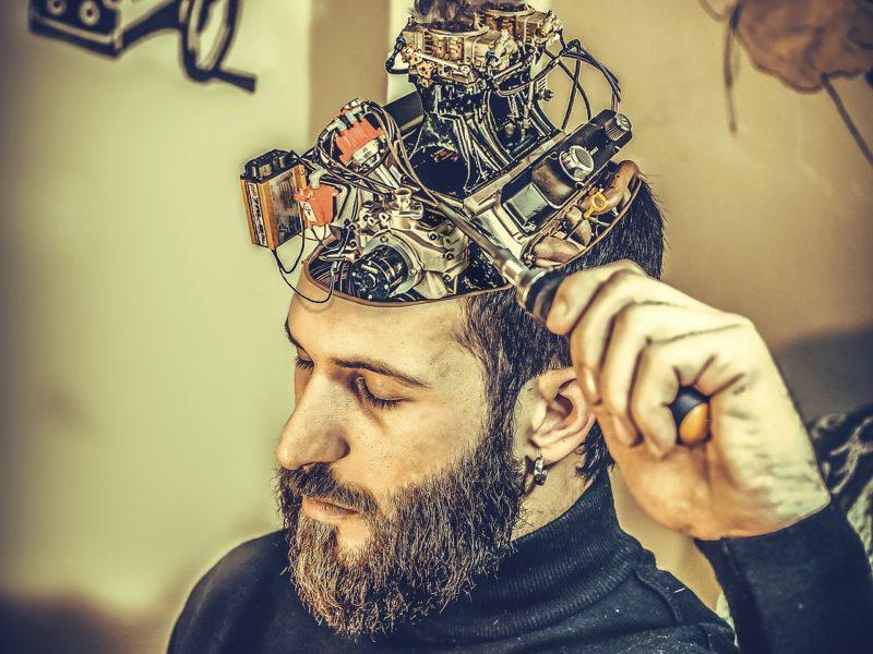 Hoe verhalen ons brein veranderen